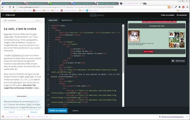 Apprendre HTML et CSS pour les novices