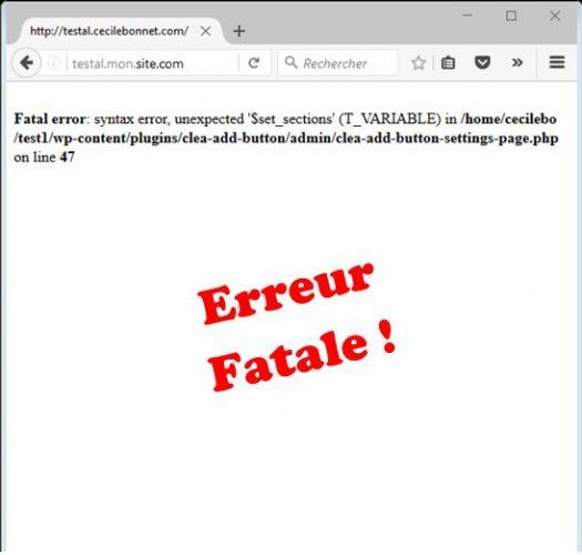 Erreur fatale avec debug true dans wp-config.php