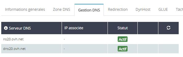 """OVH onglet """"gestion DNS"""""""