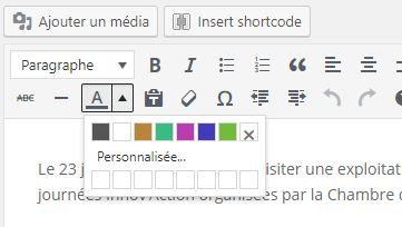 L'éditeur WordPress : des couleurs de texte personnalisées V1