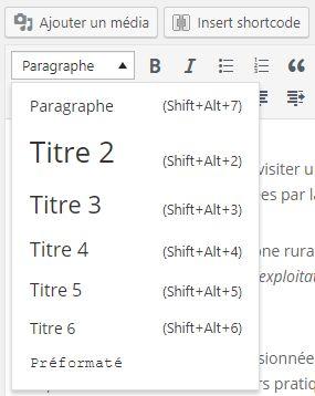 L'éditeur WordPress : pas de H1 dans les styles