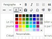 L'éditeur WordPress : les couleurs de texte par défaut