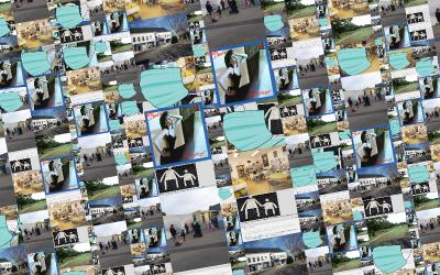 p5.js Brique 5 : des images par une API ou par l'utilisateur
